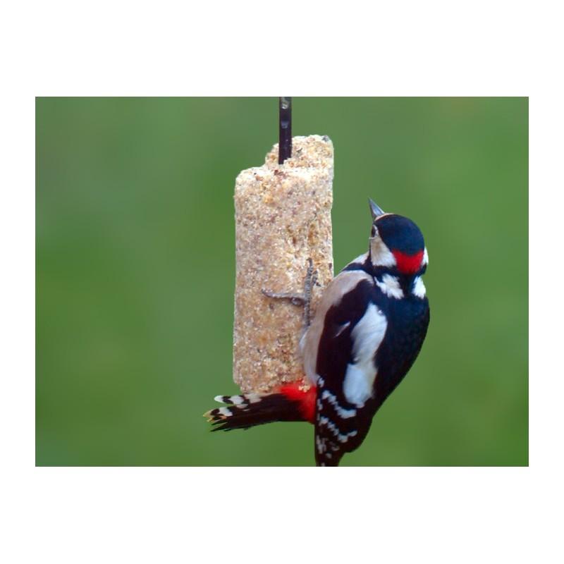 Cylindre pret l 39 emploi pour oiseaux du ciel for Oiseaux du ciel