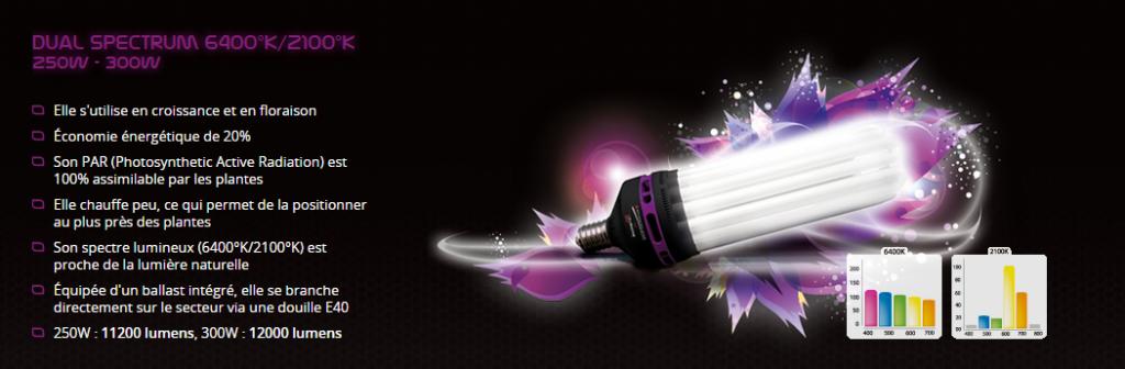 Capture CFL DUAL