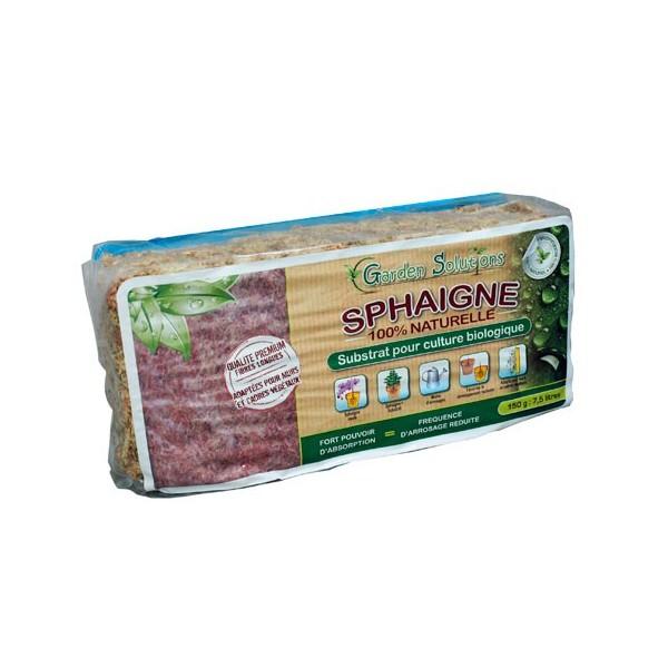 sphaigne-du-chili-sachet-150-g