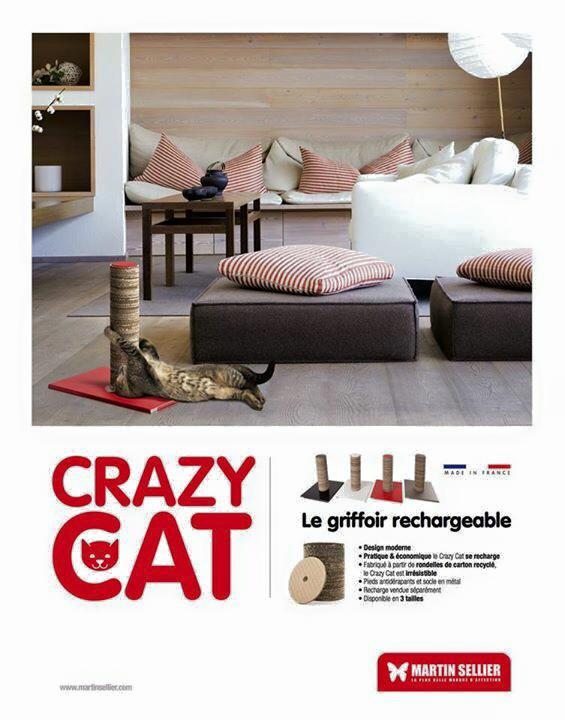 CRAZY CAT 0 LA JARDINERIE DU THEOS