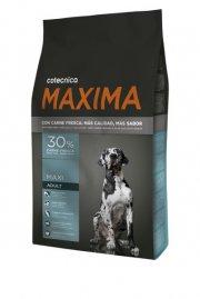 maxima maxi adult