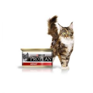 proplan-cat-adult-boite-individuelle