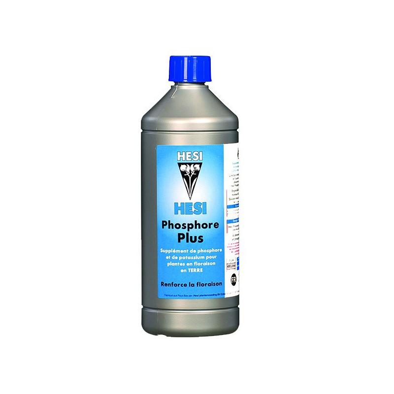 phosphore-plus-hesi
